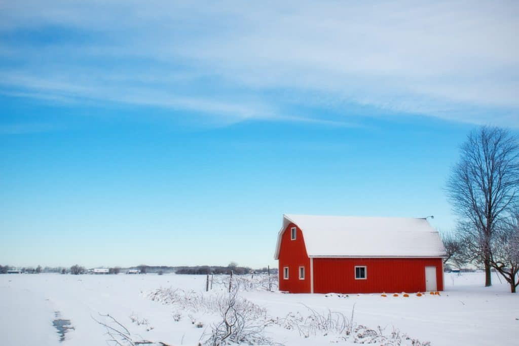 Winter Barn Winter